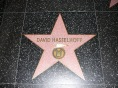 The Hoff's Star