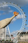 London excercEye's wheel