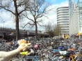 There are more bicycles in Amsterdam than in Beijing. FACT