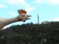 Lady Liberty Budapest