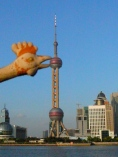 The Oriental Pearl Tower Shanghai 东方明珠塔